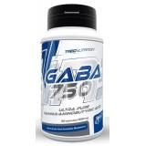 GABA 750 - 60 kaps.