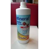 Phytochem - Mineral Aktiv 1000 ml
