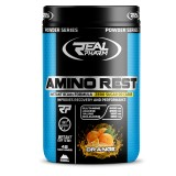 REAL PHARM- AMINO REST 500G